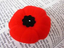 Poppy and Bible. A veterans Poppy on a Bible page Stock Photos