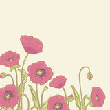 Poppy border. Poppies with space for text Royalty Free Stock Photo