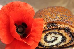 Poppy and buns with poppy seeds. Bun with poppy and red poppy flower Royalty Free Stock Photography