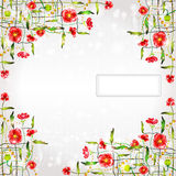 Poppy color background banner Royalty Free Stock Image