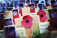 Poppy Cross, Remembrance day display Royalty Free Stock Image
