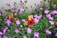 Poppy Crosses bij Graf; Tyne Cot Cemetery Stock Foto's