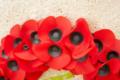 A Poppy day great remembrance war world flanders Royalty Free Stock Photo