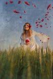Poppy fairy Royalty Free Stock Image
