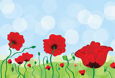 Poppy Field. Illustration or greeting card Royalty Free Stock Photos
