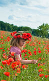 Poppy field. Little girl's portrait in poppies Royalty Free Stock Photography