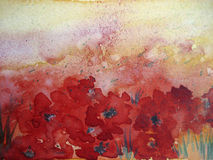 Poppy Field. Watercolor painting, vreated by the photographer Royalty Free Stock Images