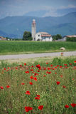 Poppy Field and Church 1 Stock Images