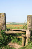 Poppy Field and Country Stile Stock Photography