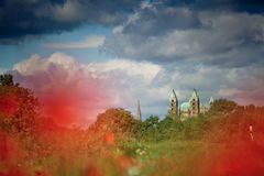Poppy Field e cattedrale di Speyer fotografia stock