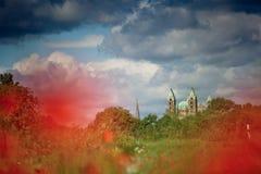 Poppy Field et cathédrale de Speyer Photo stock