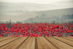 Poppy field landscape in Summer countryside sunrise with wooden Royalty Free Stock Photography