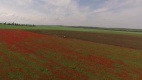 Poppy Field Mown By Tractor arkivfilmer