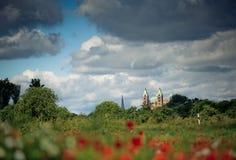 Poppy Field och Speyer domkyrka Royaltyfri Foto