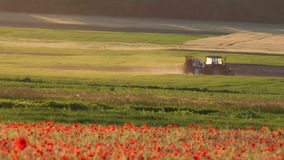 Poppy field with tractor stock video