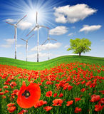 Poppy field with wind turbine Stock Photo