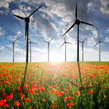 Poppy field and wind turbines Stock Photos