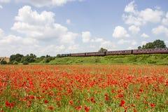 Poppy Fields y Severn Valley Railway, cerca de Bewdley Imagenes de archivo
