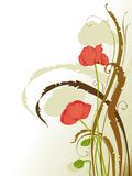 Poppy floral background. Design for card, background or wallpaper Royalty Free Stock Photos