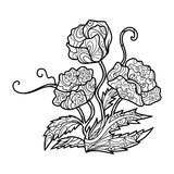 Poppy flower coloring book for adults vector. Illustration. Anti-stress coloring for adult. Zentangle style. Black and white lines. Lace pattern Royalty Free Stock Photos