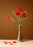 Poppy flower ina ceramic vase Stock Photography