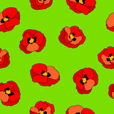 Poppy flower red  green graphic art color seamless pattern illustration Stock Photography