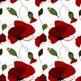 Poppy flower summer seamless pattern Stock Photos