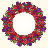 Poppy flower wreath. Vector red poppy in floral circle. Wreath frame background Stock Images