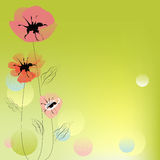 Poppy flowers. Green decorative background with poppy flowers Royalty Free Stock Photo