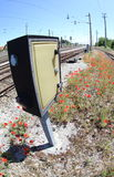 Poppy flowers along railway tracks Royalty Free Stock Images