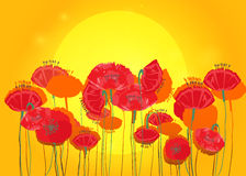 Poppy flowers on background of sunset. Royalty Free Stock Photo