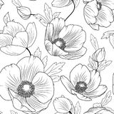 Poppy flowers seamless pattern texture black white. Poppy flowers buds leaves. Seamless floral pattern texture. Detailed black outline drawing on white Royalty Free Stock Image
