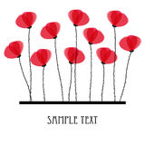 Poppy flowers. Design for greeting card Stock Photography