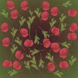 Poppy flowers. Green background with poppy flowers royalty free illustration