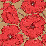 Poppy flowers pattern Royalty Free Stock Image