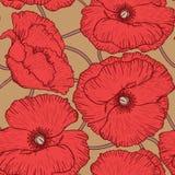 Poppy flowers pattern Royalty Free Stock Image