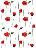 Poppy Flowers Pattern Fotografia de Stock Royalty Free