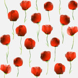 Poppy flowers pattern Stock Photo