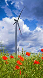 Poppy flowers, seeds, windmill and clouds Stock Photos