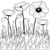 Poppy Flowers Schwarzweiss-Malbuchseite Lizenzfreies Stockbild