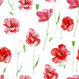 Poppy flowers seamless pattern. Poppy flowers.Floral seamless pattern.Watercolor hand drawn illustration.White background Stock Photos