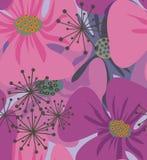Poppy flowers . Stock Photo
