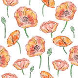 Poppy flowers seamless pattern Royalty Free Stock Photos