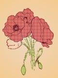 Poppy Flowers Sketch Stock Image