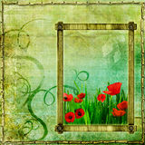 Poppy frame Stock Photography