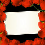 Poppy frame card. Red poppies frame and text card for design Royalty Free Stock Photography