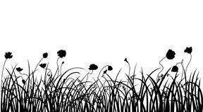 Poppy and grass. Poppy field silhouette. All objects are divided separate Stock Photography