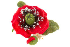 Poppy hair clip made of wool Royalty Free Stock Photo