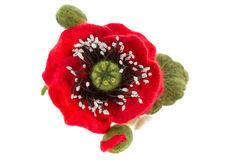 Poppy hair clip made of wool. A poppy hair clip made of wool stock photo