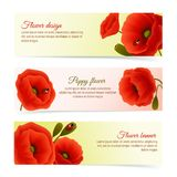 Poppy horizontal banner set. Vibrant floral horizontal banners of poppy flowers and blossoms with lady birds isolated vector illustration Royalty Free Stock Photos